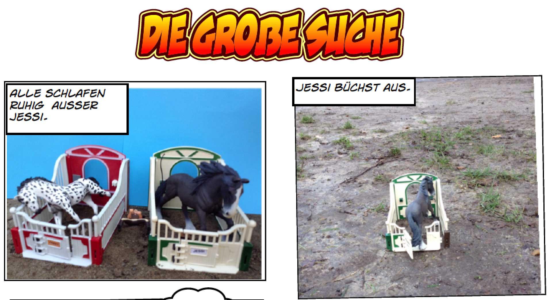 titel-die-grosse-suche